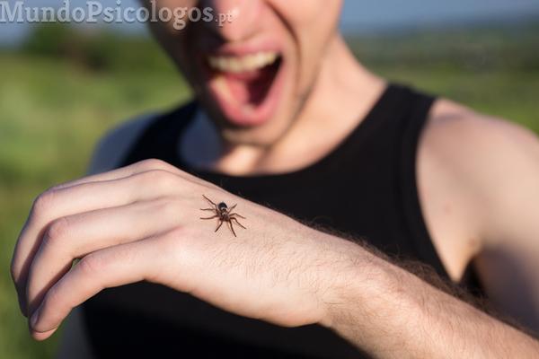 Superar fobias: o medo das baratas
